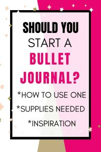 Image of text box should you start a bullet journal